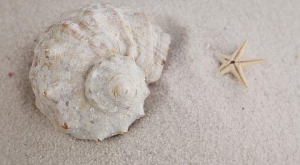 Kosmetyki na bazie minerałów Morza Martwego