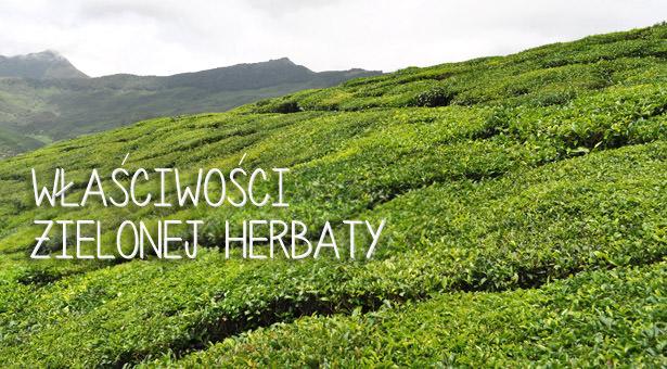 Właściwości zdrowotne zielonej herbaty