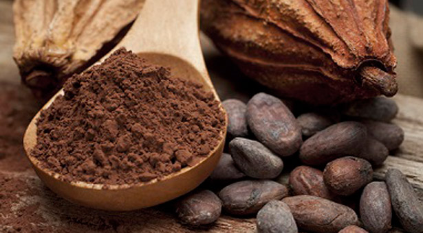Właściwości ziaren kakaowca