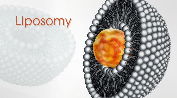 Liposomy