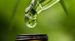 Dlaczego warto zastosować olej konopny Kannaway Green Hemp Oil?